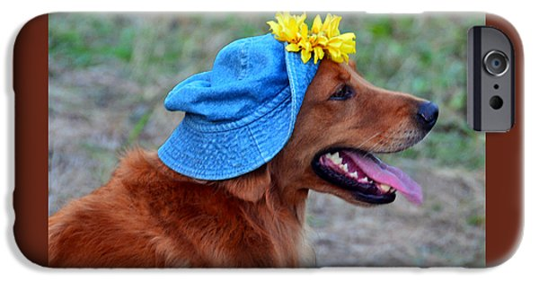 Dogs iPhone Cases - Smiling Golden Retriever in Hat iPhone Case by Catherine Sherman