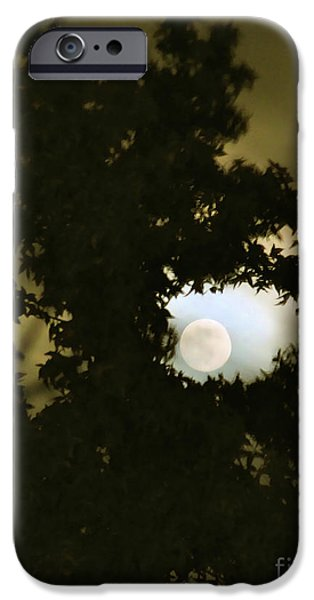 Cmlbrown iPhone Cases - Smoke Dragon Tree Swallows Moon iPhone Case by CML Brown