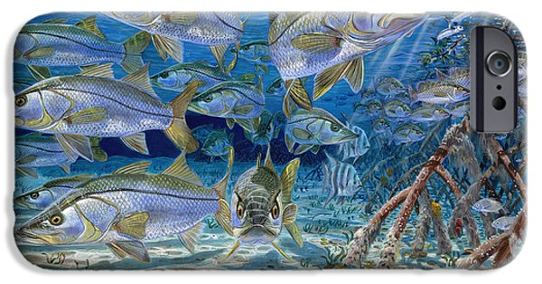Marine iPhone Cases - Snook Cruise iPhone Case by Anthony C Chen
