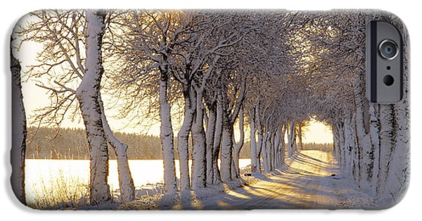 Snowy Day iPhone Cases - Snow Covered Road iPhone Case by Panoramic Images