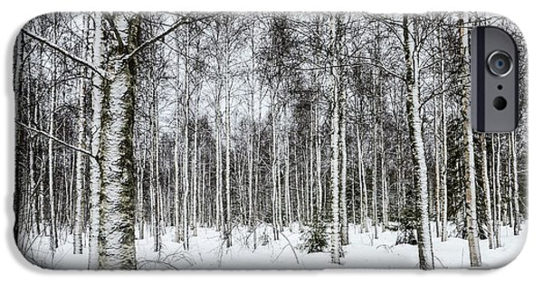 Lapin Laani iPhone Cases - Snow Covered Trees iPhone Case by Amir Paz