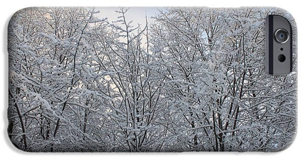 Snowy Day iPhone Cases - Snow Covered Trees iPhone Case by Carolyn Brown