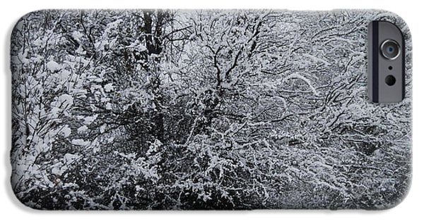 Winter Scene iPhone Cases - Snow Covered Trees iPhone Case by Ruth  Housley