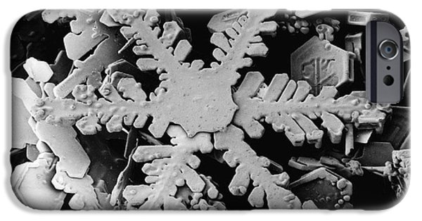 Snow Flake iPhone Cases - Snow Crystal iPhone Case by Electron and Confocal Microscopy Laboratory-Agricultural Research Service-US Dept of Agriculture