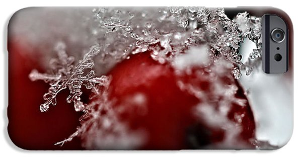 Snow iPhone Cases - Snow crystals iPhone Case by SK Pfphotography