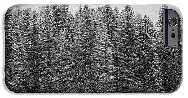 Winter Storm iPhone Cases - Snow Dusted iPhone Case by Aaron McDonald