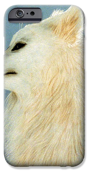 Huskies Pastels iPhone Cases - Snowman The Samoyed iPhone Case by Jan Amiss