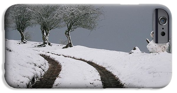Snow iPhone Cases - Lined up Along Snowmans Way iPhone Case by Jackie Tweddle