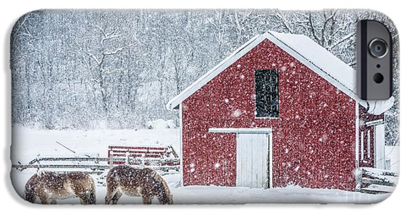 New England Farm iPhone Cases - Snowstorm Stowe Vermont iPhone Case by Edward Fielding