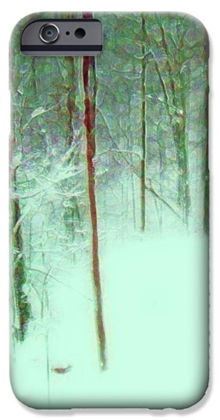 Snowy Day Mixed Media iPhone Cases - Snowy Day iPhone Case by Desiree Paquette