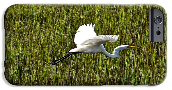 Nature Center Pond iPhone Cases - Snowy Egret In Flight Charleston SC iPhone Case by Joan Kaplan