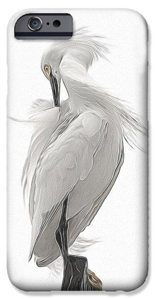 Birds iPhone Cases - Snowy Egret Preening 2 iPhone Case by Ernie Echols
