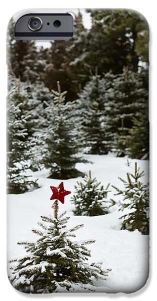 Snow iPhone Cases - Snowy Forest And Small Tree In Front iPhone Case by Ink and Main