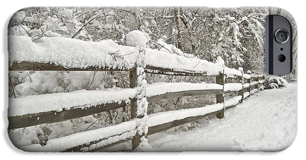 Snowy Day iPhone Cases - Snowy Morning iPhone Case by Michael Peychich