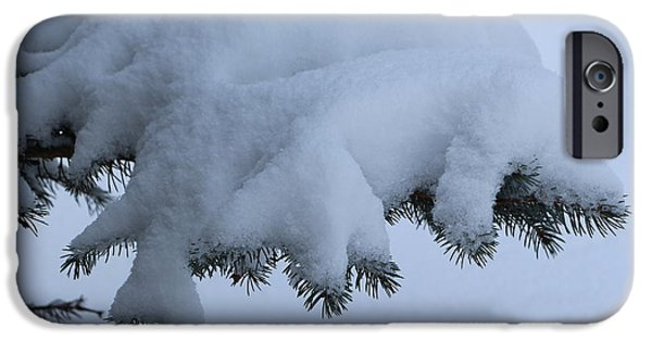 Wintertime iPhone Cases - Snowy Spruce Branch iPhone Case by Jari Hawk