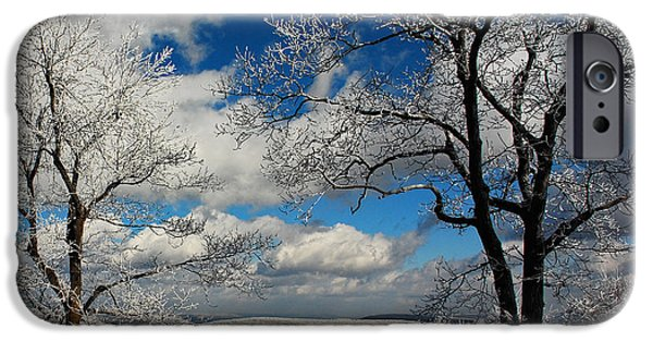 Trees In Snow iPhone Cases - Snowy Sunday iPhone Case by Lois Bryan