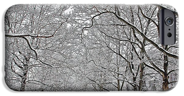Recently Sold -  - Snowy iPhone Cases - Snowy Treeline iPhone Case by Aimee L Maher Photography and Art