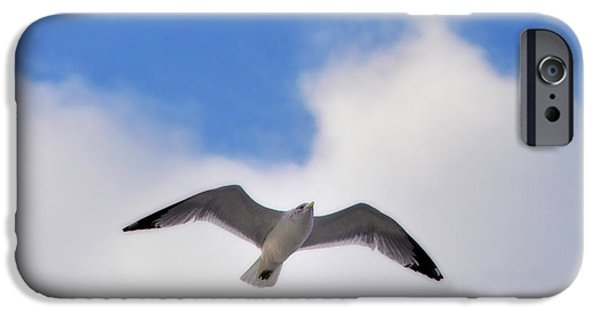 Flying Seagull iPhone Cases - Soaring Seagull iPhone Case by Bill Cannon