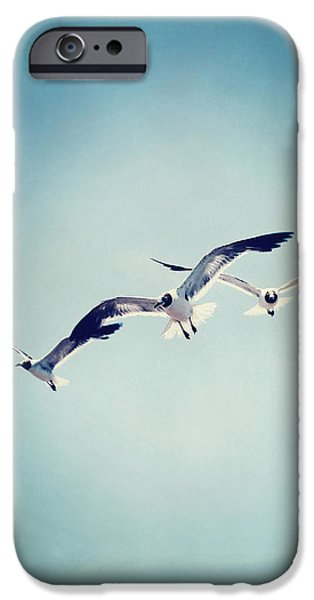 Flying Seagull iPhone Cases - Soaring Seagulls iPhone Case by Trish Mistric