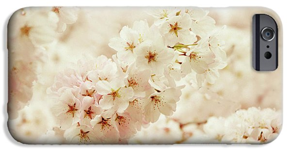 Cherry Blossoms iPhone Cases - Softly iPhone Case by Jessica Jenney
