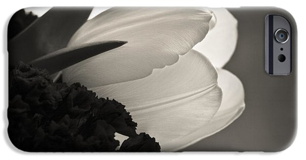 Florals Photographs iPhone Cases - Softness iPhone Case by Marilyn Hunt