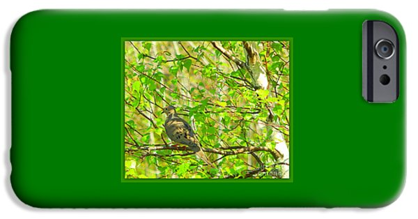 Fauna iPhone Cases - Solace iPhone Case by Karen Cook