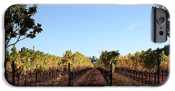 Sonoma iPhone Cases - Sonoma Vineyards - Sonoma California - 5D19314 iPhone Case by Wingsdomain Art and Photography