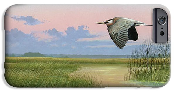 Michael Paintings iPhone Cases - Sounds of Silence iPhone Case by Mike Brown