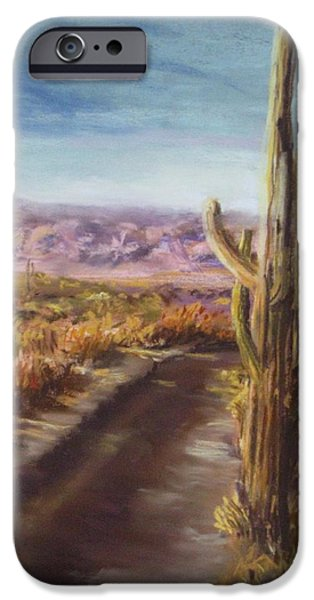 Southern Arizona iPhone Case by Jack Skinner