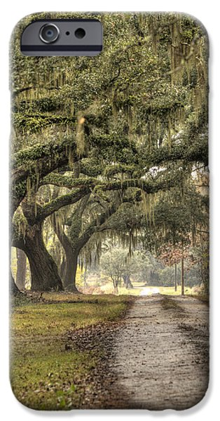 Plantation iPhone Cases - Southern Drive Live Oaks and Spanish Moss iPhone Case by Dustin K Ryan
