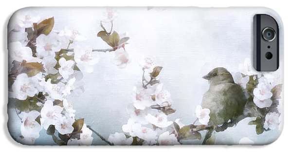 Blossom Mixed Media iPhone Cases - Sparrow on Cherry Branch iPhone Case by Shanina Conway