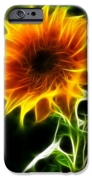 Genuine iPhone Cases - Spectacular Sunflower iPhone Case by Pamela Johnson