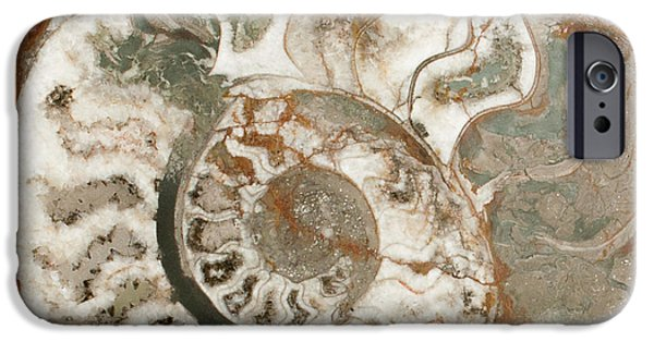 Rust iPhone Cases - Spiral - 3777 iPhone Case by David R Mann