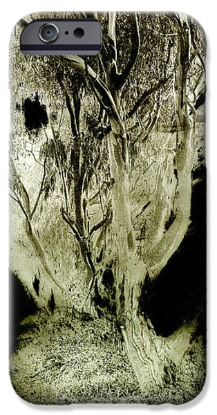 Duo Tone iPhone Cases - Spirit Tree iPhone Case by Paul W Faust -  Impressions of Light