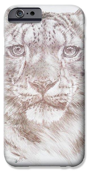 Animal Drawings iPhone Cases - Splendid iPhone Case by Barbara Keith