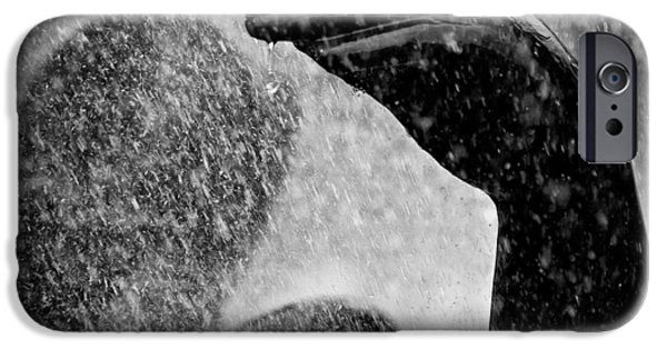 Rain iPhone Cases - Spray iPhone Case by Dave Bowman