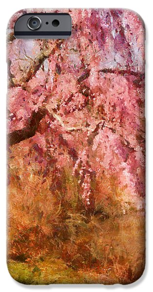 Spring - Sakura - A Beautiful Spring day  iPhone Case by Mike Savad