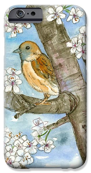 Plum Drawings iPhone Cases - Spring Blossoms Sparrow iPhone Case by Cathie Richardson