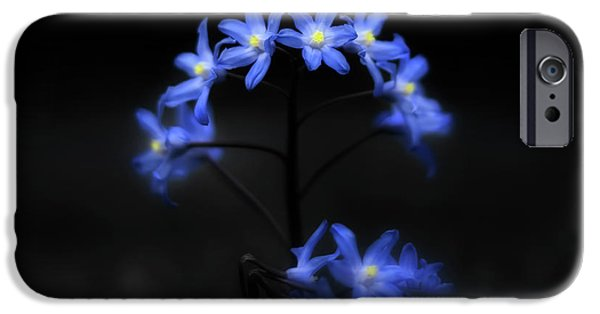 Spring iPhone Cases - Spring Dance iPhone Case by Evelina Kremsdorf