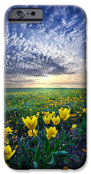 Meadow Photographs iPhone Cases - Spring Fever iPhone Case by Phil Koch