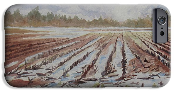 Farm Fields Paintings iPhone Cases - Spring Flood iPhone Case by Jenny Armitage