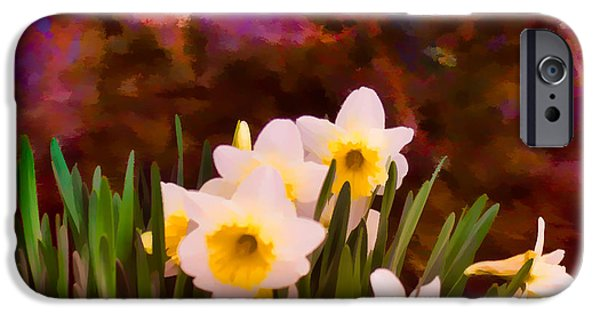 Springtime In The Park iPhone Cases - Spring Flowers and Lichen covered Boulder - 1d iPhone Case by Greg Jackson