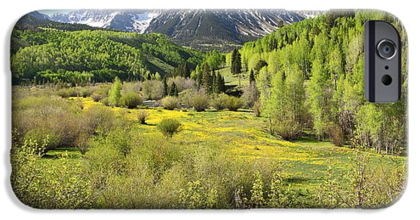 Oak Creek iPhone Cases - Spring Greens iPhone Case by Eric Glaser