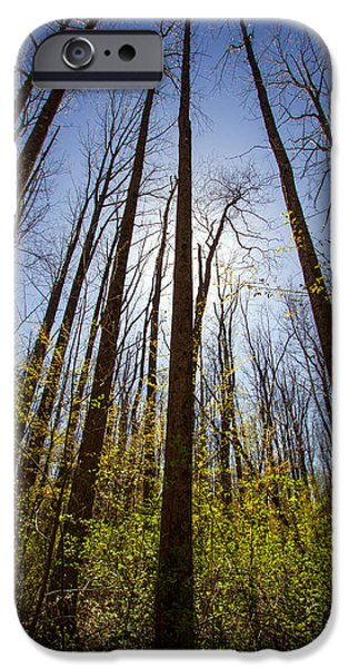 Indiana Springs iPhone Cases - Spring  iPhone Case by Jackie Novak