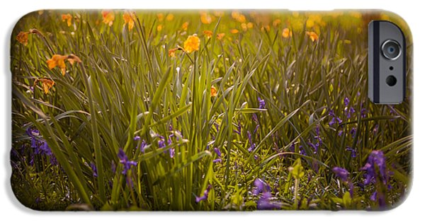 Meadow Photographs iPhone Cases - Spring meadow iPhone Case by Chris Fletcher