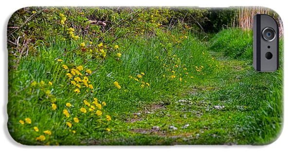Pathway iPhone Cases - Spring Pathway iPhone Case by Leif Sohlman