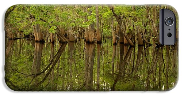 Chiefland iPhone Cases - Spring Reflections At Manatee Springs iPhone Case by Adam Jewell
