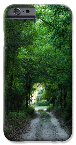 Overhang iPhone Cases - Spring Shadows iPhone Case by Shelby  Young