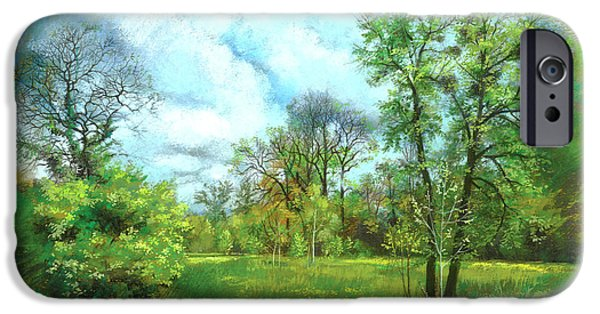 Meadow Photographs iPhone Cases - Spring The Meadow iPhone Case by Zorina Baldescu