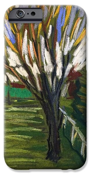 Best Sellers -  - Shed Pastels iPhone Cases - Spring Tree iPhone Case by Tim Bruneau